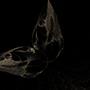 Fractalline Moth by pyromaniac616