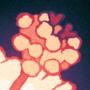 Hibiscus [commission]
