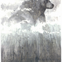 The Bear Lin by Lundsfryd