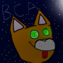 B.C.A. Stars