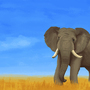 Elephant by J-qb