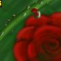 Dew Drops by Luwano