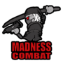 Madness Combat by XxPayBoyxX