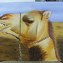 Camels Are Fun by APeregrina