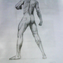 Study of Male Body by Lucketo
