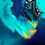 向日葵と蝶 - I Dream in Blue