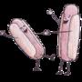 Dancin Dogs