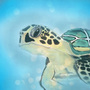 Green Sea Turtle by TheDeliMan