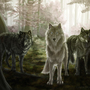 Wolf Forest by Louise-Goalby