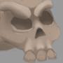Shaded Skull