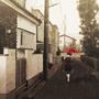 Rain by Sev4