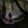 A Stroll Through the Woods by SeventhTower