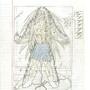 Fan DBZ Comic Page 7 - Genesis by Blue-minded-boy