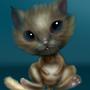 Kitten by Xuruki