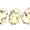 A Line of Mutated Hammies
