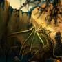 Golden Dragon by Sev4