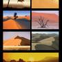 Desert studies