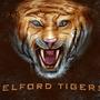 Telford Tigers by tlishman