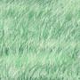 Grass by FreesiaRose