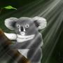 Koala! by SkruffySteve