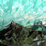 Mont by Trez-Treize