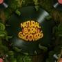 Natural Born Groovers by WackWacko