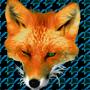 Fox Teeth by myskull