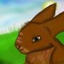 Rabbit from 2011