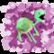turtlebro