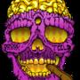 GOLDSKULL-SMOKEBLUNTS