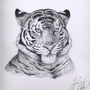 Tiger by Lowgan