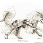 Arcanine by drawingsofpokemon