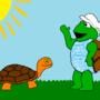 Morning, Turtle.