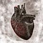 Heart by Iwalt