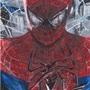 Spiderman by acillustrations