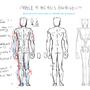 Learn Your Back Figure by Jettyjetjet