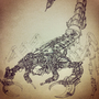 Fine Dine Scorpion by Marcomatic