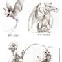 Flying Pokémon