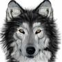 big bad wolf by TatLoco