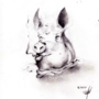 Decapicated pig with cigarette by renaissancekid