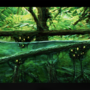 Sunken forest by Cantwister
