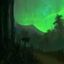 Aurora woods by Xephio