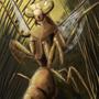 mantis by Taburah