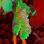 Primordial Ejaculant III by funkmeisterfish