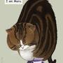 Maru the Box Cat