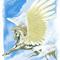 Traditional Pegasus