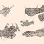 Sketchships