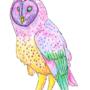 Owl by Sam-DeanWinchester