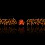 Invidious Animation Banner