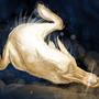 Platypus by DrApfelwurst
